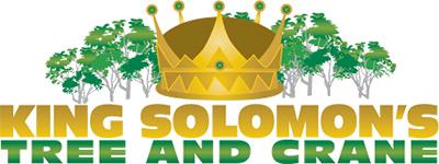 King Solomon's Tree Service Logo